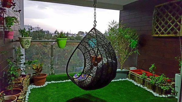 Sunshine and Shade Balcony Garden MyCloudForest Banglore